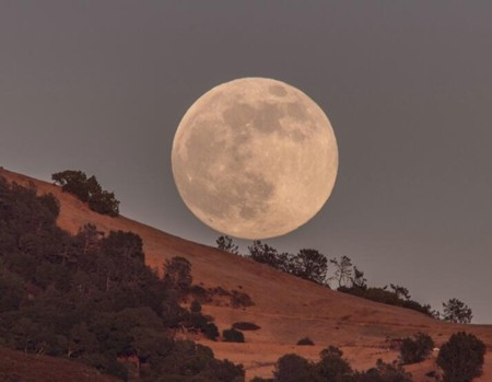 California,-USA-