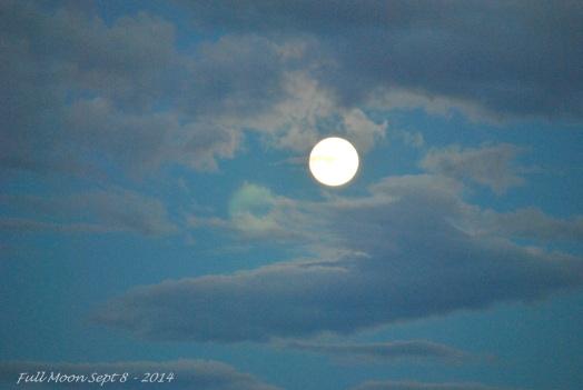 Supper Moon Sept 8 - 2014 (6)